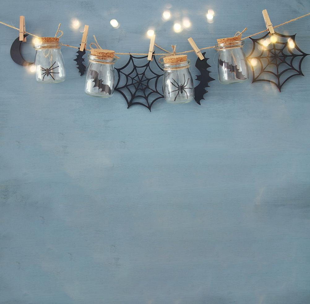 Halloween Backdrops Festival Backdrops Halloween Holiday Bottle Spider And Bat IBD-19008