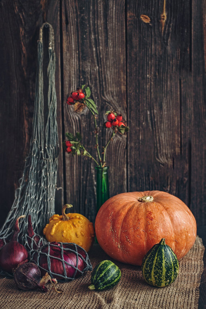 Harvest Season Big Pumpkins and Fruit Halloween Backdrops IBD-P19127