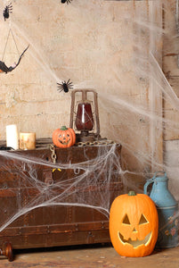 Spider Silk and Few Pumpkins Halloween Backdrops IBD-P19145