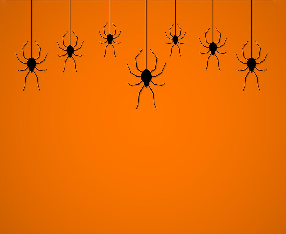 Orange Background Hang Spiders Backdrops Halloween Background IBD-H19132