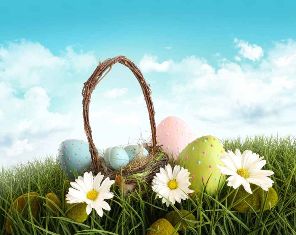 Festival Backdrops Easter Backdrops Flower Backdrop For Sale zzj7-E