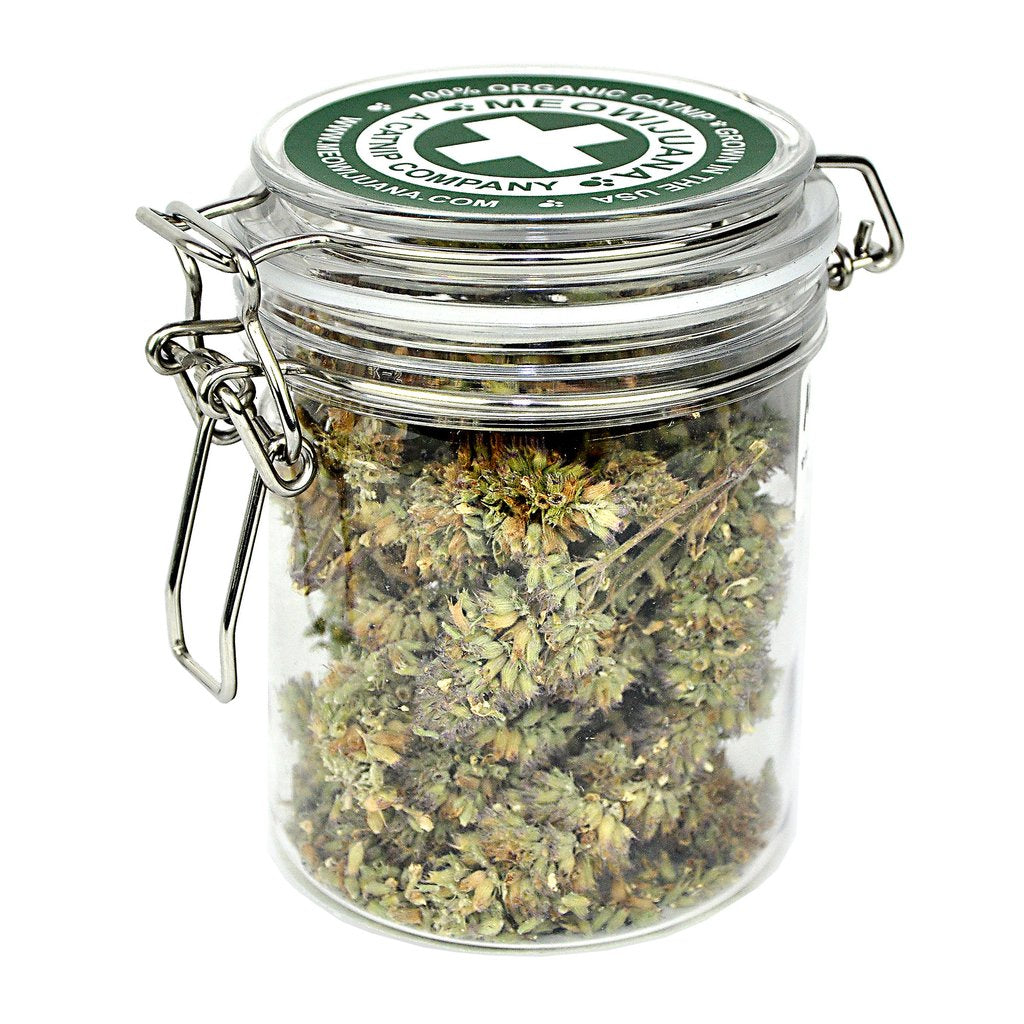 Meowijuana Purple Passion Catnip Buds Jar