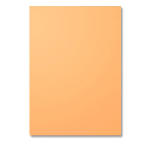 A4 Cardstock | Peekaboo Peach | Retired | 12 Sheets