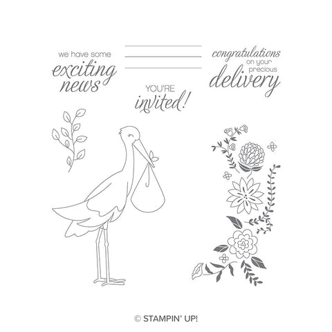Precious Delivery | Retired Clear Mount Stamp Set | Stampin' Up!
