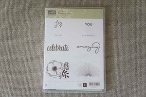 Amazing You | Clear Mount Saleabration Stamp Set | SAB