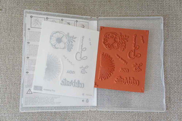 Amazing You | Clear Mount Saleabration Stamp Set | SAB | Brand New, Never Used