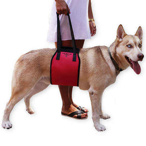 Dog Lift Support Rehabilitation Harness For Canine Aid Assist Sling Old And Young Dogs With Weak Leg