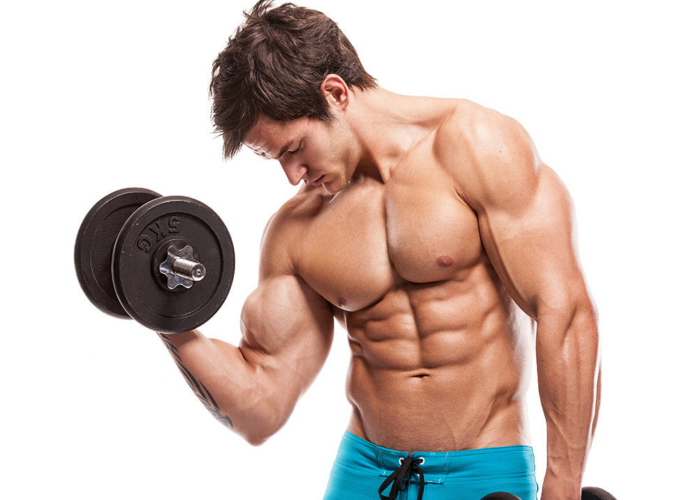 The Secret To Building Bigger Arms
