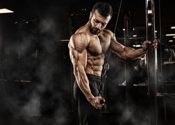Hands Down The Best Tricep Workouts