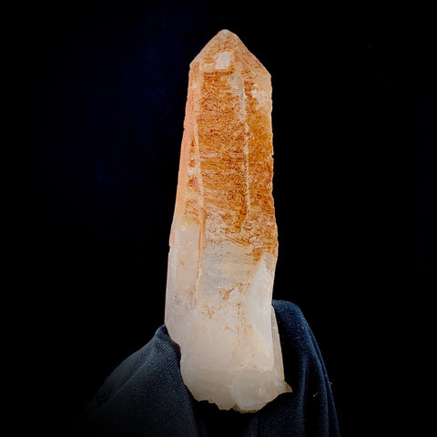 Scarlet Temple ET Lemurian-Lemurian-The Lemurian Rose