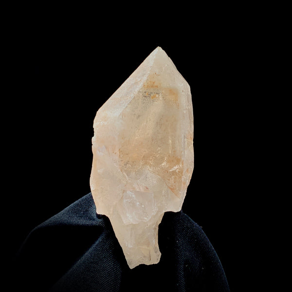 Dreamsicle Lemurian with Record Keepers-Lemurian-The Lemurian Rose