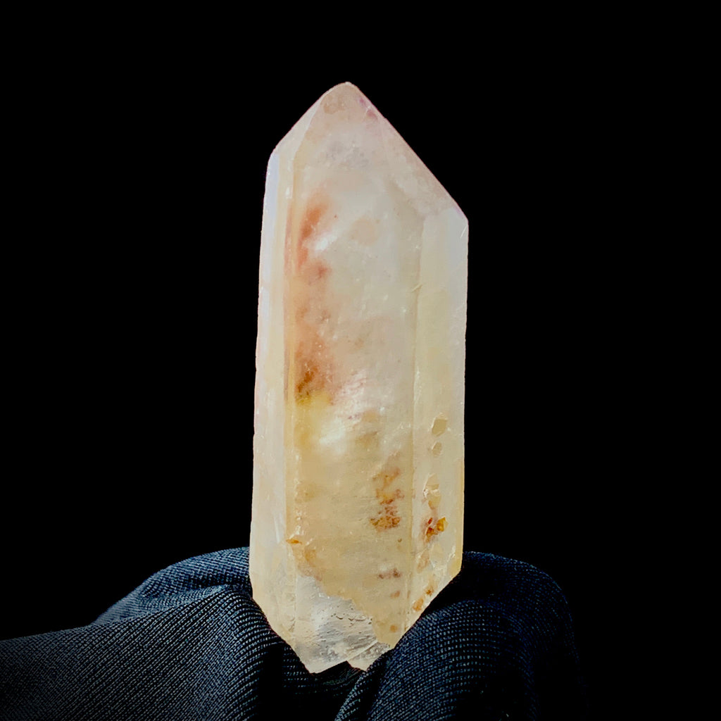 Large Unity Lemurian With Multiple Manifestations-The Lemurian Rose-The Lemurian Rose