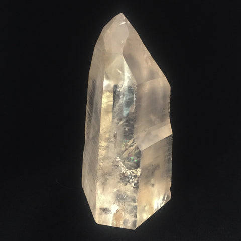 Standing Lemurian Point with Phantoms-The Lemurian Rose