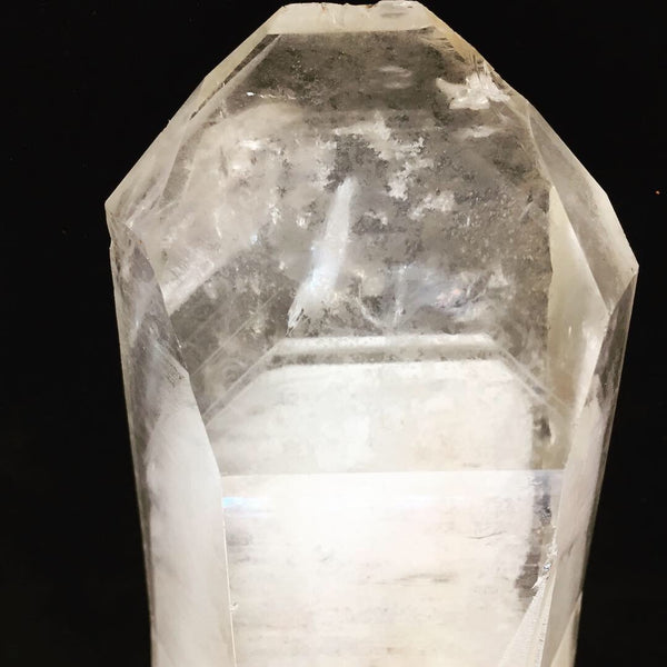 Natural Phantom Lemurian--Grounder, Singing! 🎶