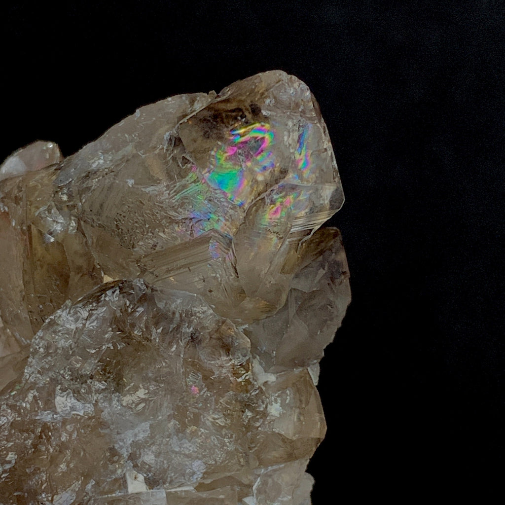 Smoky Elestial with Brilliant Rainbows-Elestial-The Lemurian Rose