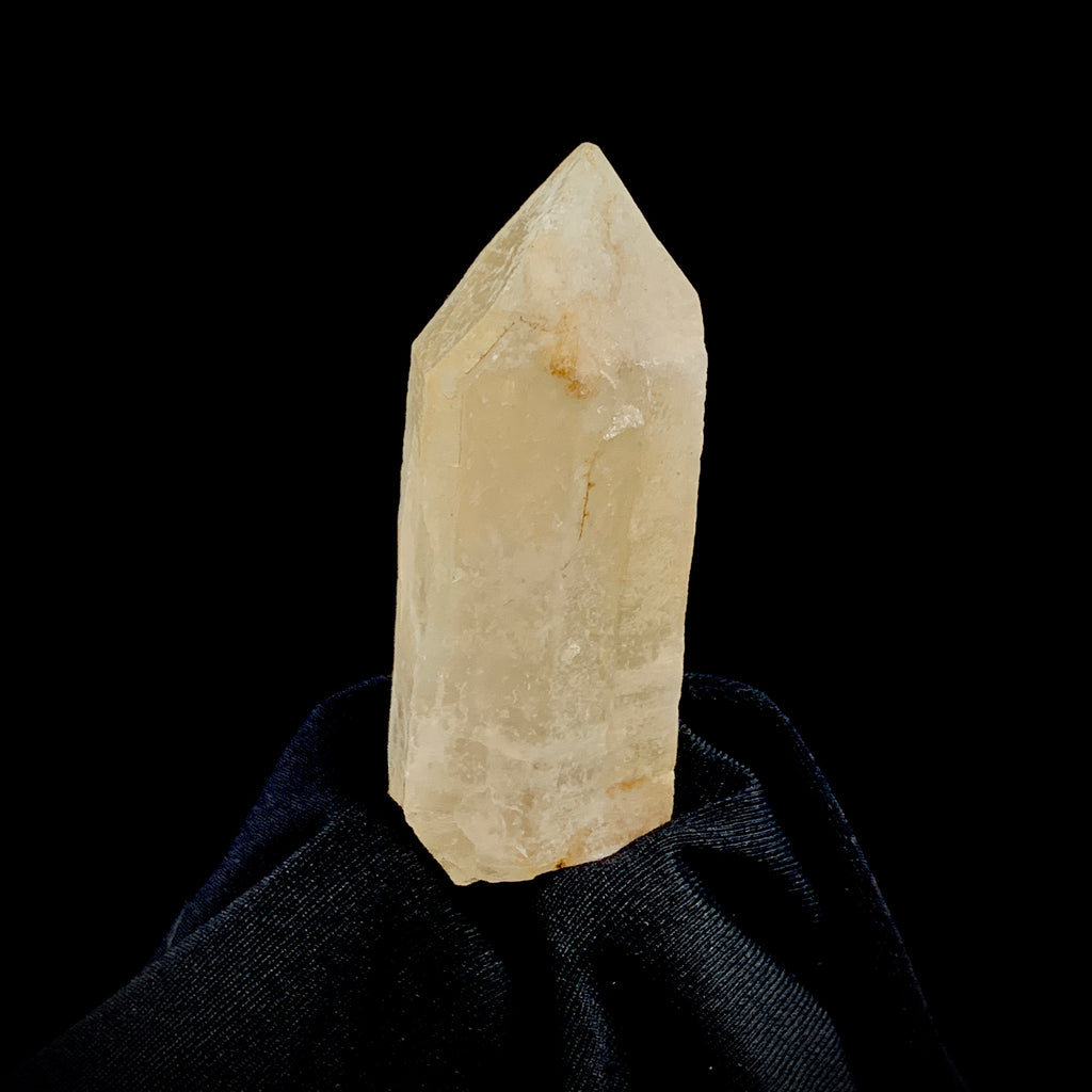 Golden Dreamsicle Lemurian