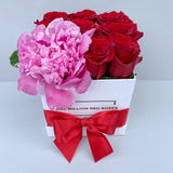 Classic Collection - Cube - Rosse Rosse + Peonia - Scatola Bianca