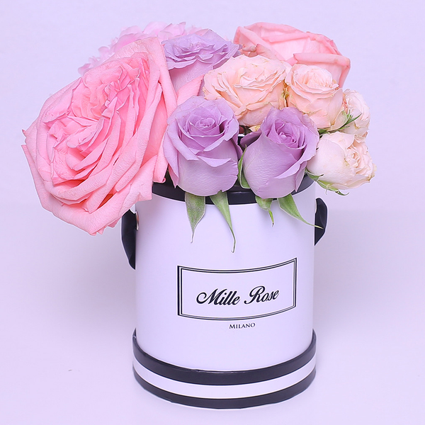 Classic Collection - Mini - Rose Mix Rosa Lilla Fucsia - Scatola Bianca