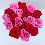Classic Collection - Small - Rose Rosa e Rosse Scacchi - Scatola Nera