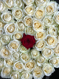 Classic Collection - One Billion Box - Rose Bianche Rosse - Scatola Nera