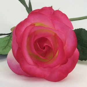 Rose - Real Touch - Half Bloom -Cream/Fuchsia