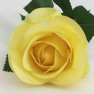Rose - Real Touch - Half Bloom - Yellow
