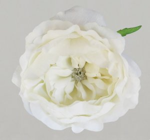 Peony Half Bloom - Real Touch - White