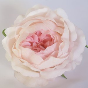 Peony Half Bloom - Real Touch - Light Pink