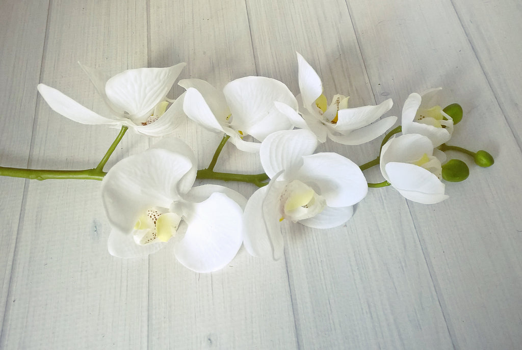 Real Touch Phalaenopsis Orchids 7 Flowers