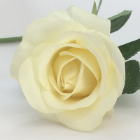 Rose - Real Touch - Half Bloom - Cream