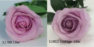 Rose - Real Touch - Half Bloom - Lilac