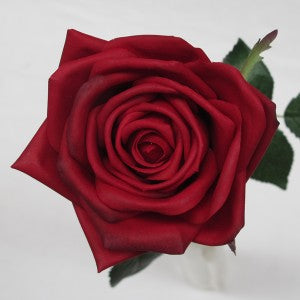 Rose - Natural - Real Touch - Red