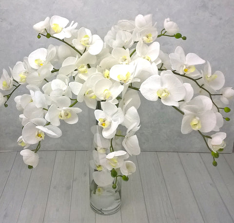 V114 Real Touch Phalaenopsis Orchids