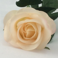Rose - Real Touch - Half Bloom - Peach