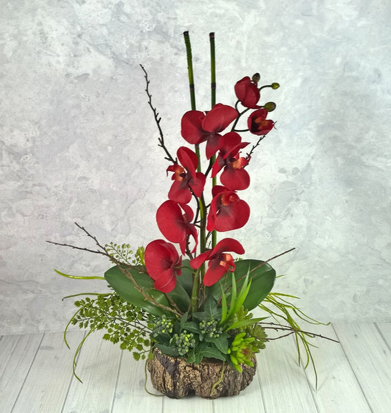 V124  Orchid in tree trunk vase