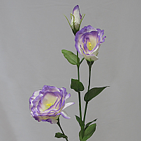 Lisianthus  Real Touch - Purple