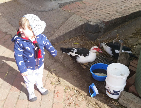 Scarlett feeding ducks in Attipas Grey Cutie