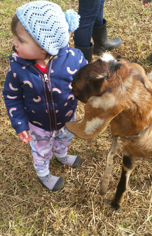 Scarlett patting a goat in Attipas Cutie Grey