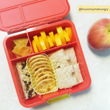 Little Lunchbox Co Bento Cups - Yellow Rectangles
