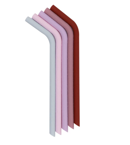 We Might be Tiny Bendie Silicone Straws in Earth & Bloom (Pink & Purple)