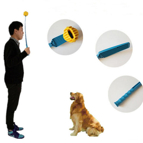 Swing Stick + Special Ball