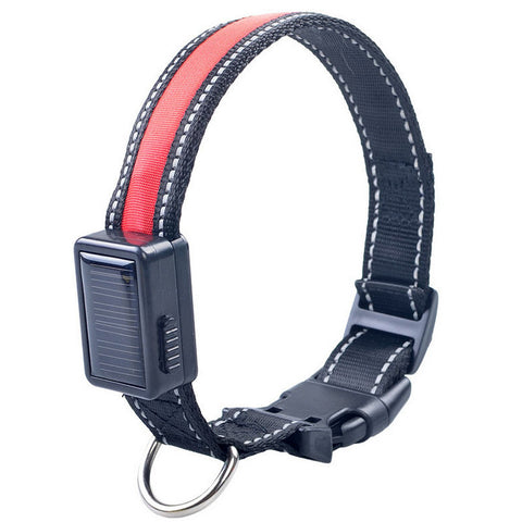 LED Collar (Solar & USB Rechargeable)