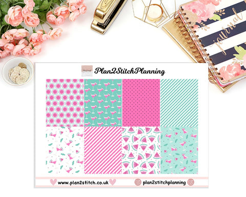 Pink Watermelon Full Box Erin Condren Planner Stickers