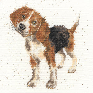 Beagle Hannah Dale Bothy Threads Kit
