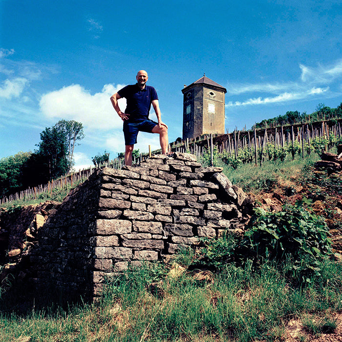 Rebels of wine : Domaine Tissot