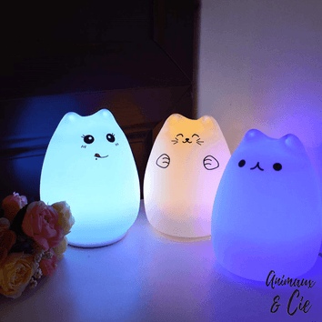 Lampe LED USB Chat