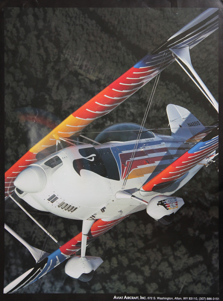 Eagle N48BB In Flight Poster