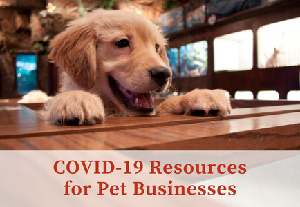 COVID-19 Resources for Pet Businesses