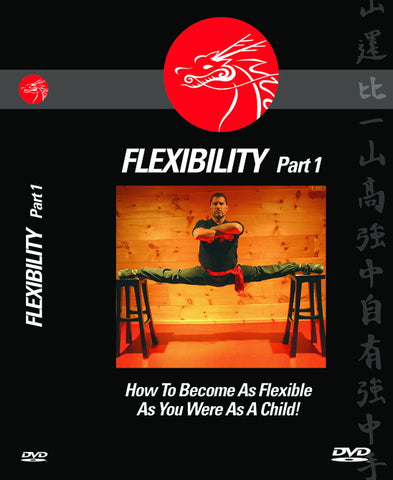 FLEXIBILITY (How To Become As Flexible As You Were As A Child!