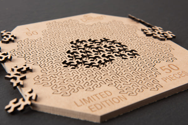 Fractal Jigsaw Puzzle 50 Piece Limited Edition